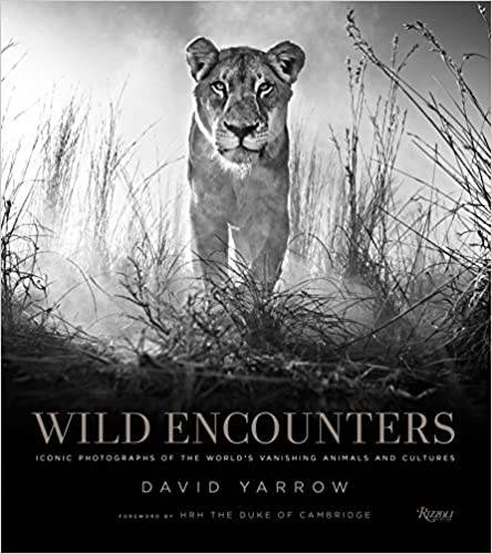 Wild Encounters by David Yarrow
